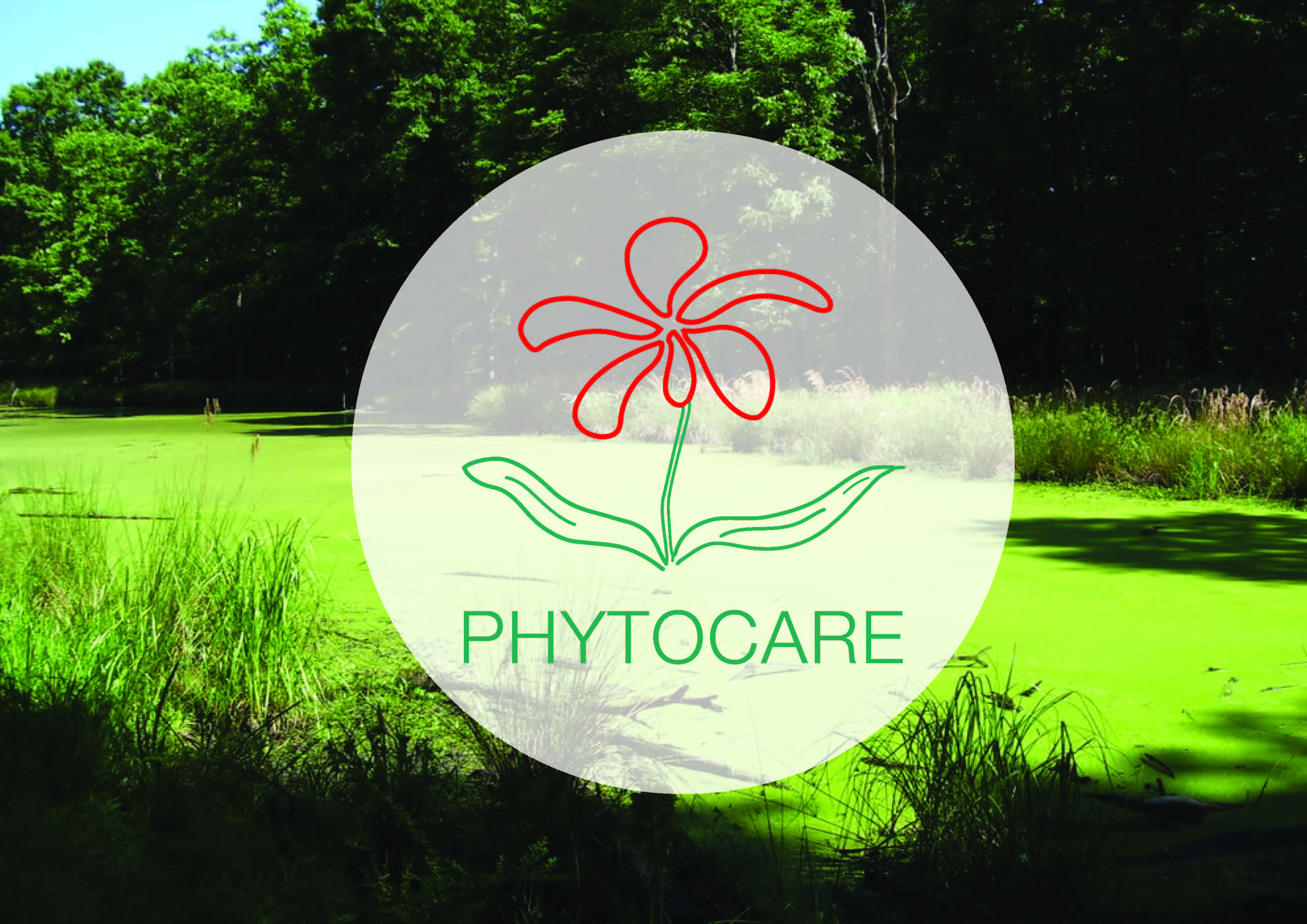 poster_phyto_2010